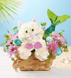 SEASIDE MEREMAID CAT  in Lexington, KY | FLOWERS BY ANGIE