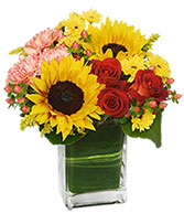 Season For Sunflowers Floral Arrangement in Goshen, Indiana | WOODEN WAGON FLORAL SHOPPE INC