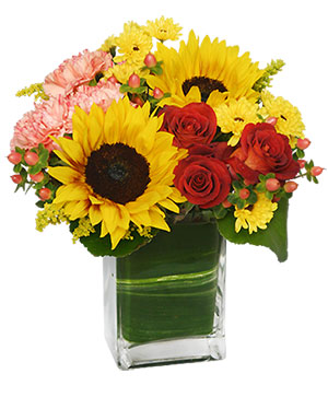 Season For Sunflowers Floral Arrangement in Bryan, OH | Farrell's Lawn & Garden and Flowers