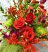 Soft Feeling  Seasonal Flowers