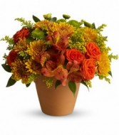 Season Of Splendor Fall Arrangement