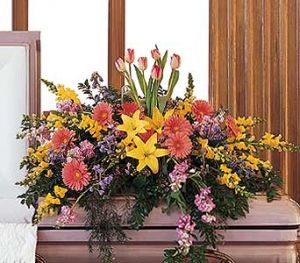 GLORIOUS GARDEN  Half Casket Spray of seasonal flowers. Lillies, gerbera daisies, snapdragons, tulips, blue delphinium and more. ( some flowers are seasonal and not always available so we may substitute)