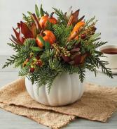 Seasonal Harvest