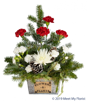 Seasonal Suprise Floral Arrangement