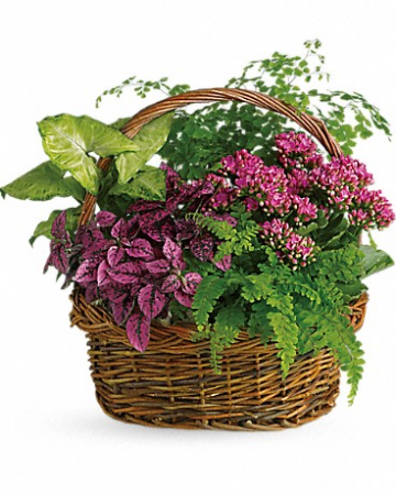 Secret Garden Basket T96-2