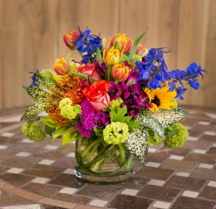 Secret garden Seasonal spring compact mix