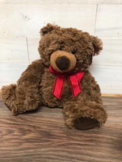 "Send a hug  10"" plush bear"
