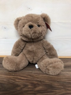 "Send a hug  10"" super soft bear"