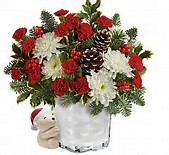 Send a Hug Bear Buddy By Teleflora  in Cloquet, MN | SKUTEVIKS FLORAL