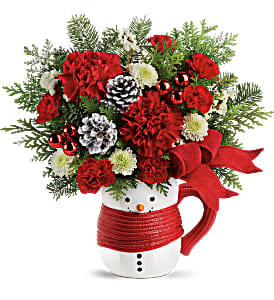 Send A Hug Snowman Teleflora 2 Gifts in 1 in Springfield, IL | FLOWERS BY MARY LOU