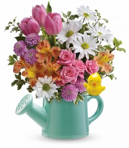 Send a Hug Tweet Tweet Bouquet   ** Local Delivery or pick up only **