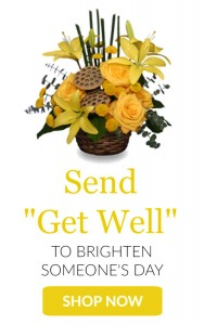 Send Get Well  in Granville, NY | The Florist at Mandy's Spring