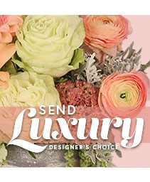 Send Luxury Designer's Choice