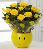 Sending a Smile Mini Rose Plant