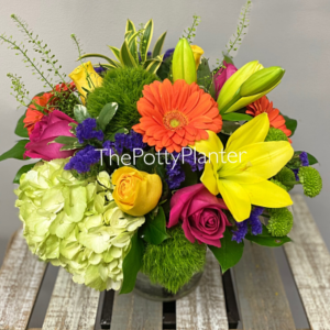 Sending Sunshine  in Etobicoke, ON | THE POTTY PLANTER FLORIST