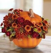 Sending Thanks Pumpkin