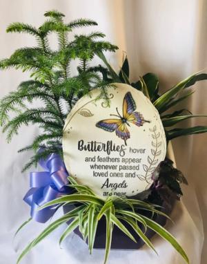 Sentimental Garden Dish Garden in Coleman, WI | COLEMAN FLORAL & GREENHOUSES