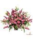 Serenata  Flower Arrangement