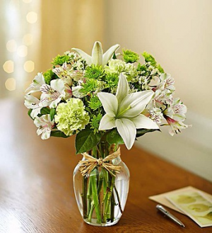 Serene Green Arrangement in Winston Salem, NC | RAE'S NORTH POINT FLORIST INC.