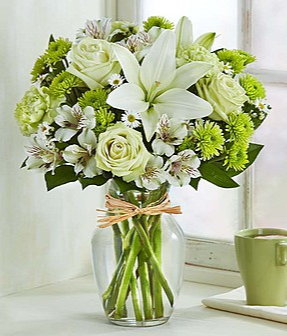 Serene Green™ Arrangement in Croton On Hudson, NY | Cooke's Little Shoppe Of Flowers
