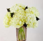 Serene  Vase