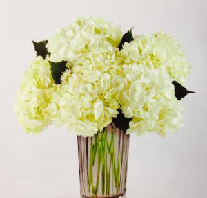 Serene  Vase in Powell, OH | MILANO FLORIST