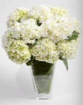 SF 6- Hydrangea in a vase Also available in other colors