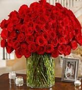 sha19 100 roses..... Wow !!!!