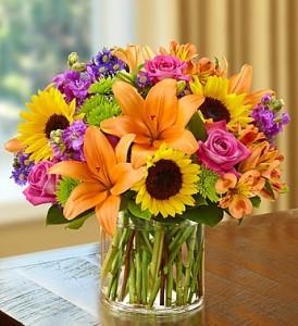sha4 floral rhapsody