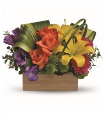 Shades of Brilliance Arrangement