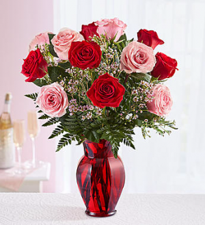 Shades of Pink and Red™ -12 Roses  in Valley City, OH | HILL HAVEN FLORIST & GREENHOUSE