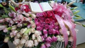 Shades of Pink with Bible Casket Cover