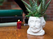 """Shakespeare Planter for 2"""" plants"""