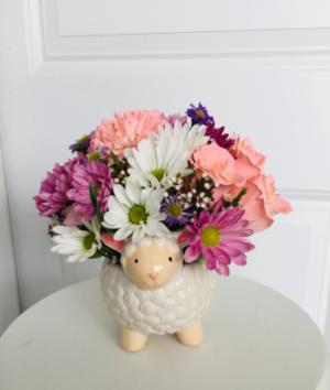 Welcome Baby Girl  in Whittier, CA   Rosemantico Flowers