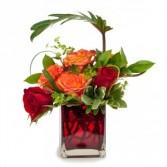 Shelter My Love Fresh Flower Arrangement