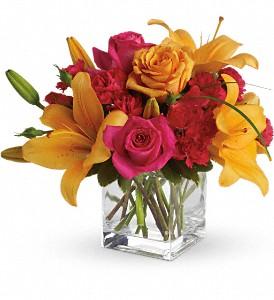 Sherbert  Vase Arrangement  in Airdrie, AB   Flower Whispers