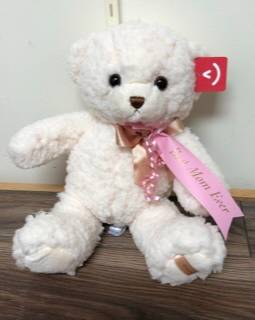 Best mom ever plush bear Send a hug