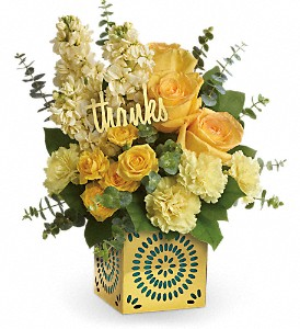 SHIMMER OF THANKS (out of container till March can make in glass cube) in Fort Lauderdale, FL | ENCHANTMENT FLORIST