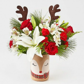 Shine Bright Holiday Arrangement by FTD