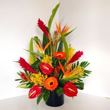 Shinning with Tropical Flowers