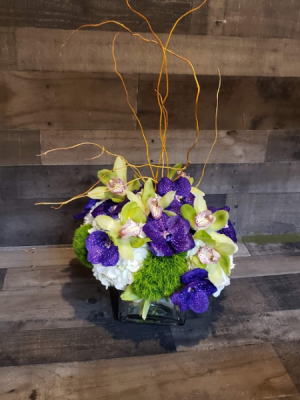 Shockingly Shelley  in Chelmsford, MA | East Coast Florist
