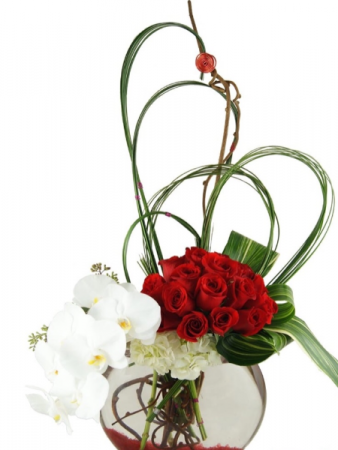 SHOW ME LOVE Valentine's Day, Anniversary