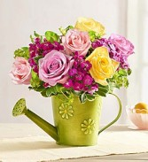 Shower of Roses in Green Floral Watering Can