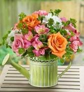 Shower Of Flowers Flower Arrangment