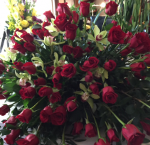 Showers of Love..Biggest Surprise 100 Elegant Roses and 12 Orchids