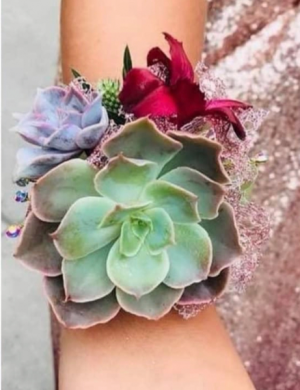 Showstopper Succulent Corsage in Stephenville, TX | University Flowers & More