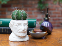 "Sigmund Freud planter for 2"" plants"