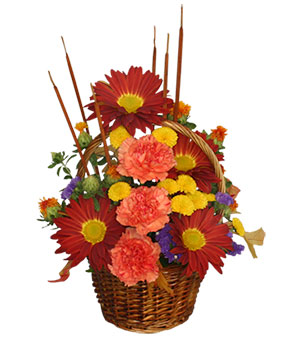 SIGNS OF FALL Basket of Flowers in Fitchburg, MA | CAULEY'S FLORIST & GARDEN CENTER