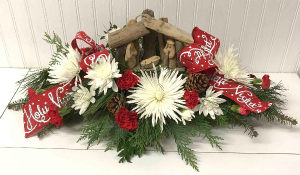 Silent Night,Holy Night  in Easton, MD | ROBINS NEST FLORAL AND GARDEN CENTER