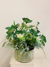 (SILK) Rustic Garden of Greens  Silk Arrangement